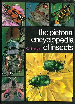 The pictorial encyclopedia of insects